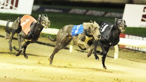 eclipse17.jpg